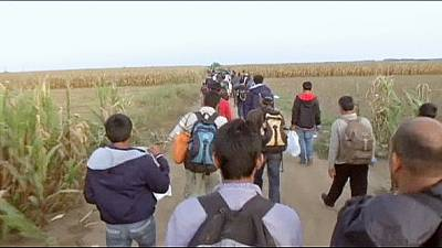 Aumenta il flusso di migranti ai confini croati