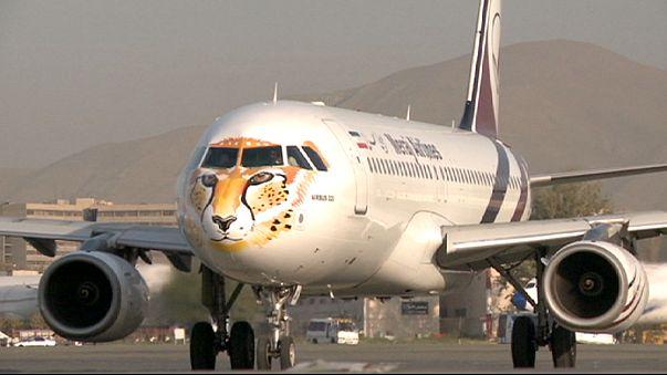 Nesli tükenen Asya çitaları uçaklara resmedildi