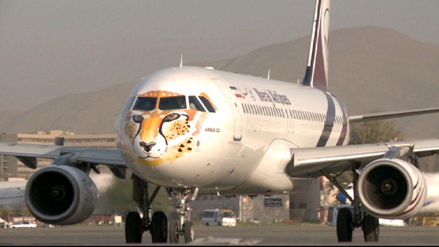 نقش یوزپلنگ ایرانی بر روی هواپیما؛ تلاش برای جلوگیری از انقراض یک حیوان نادر