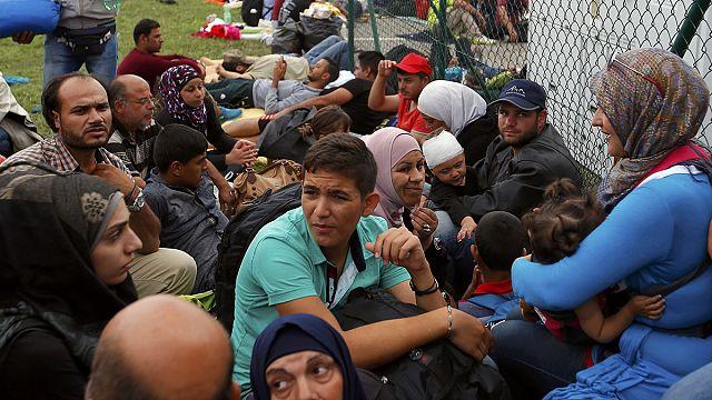 Binlerce mültecinin kapalı sınır kapılarındaki çilesi sürüyor