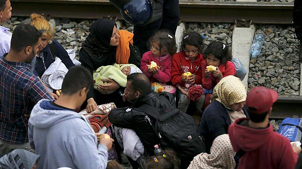 Los refugiados pugnan con la policía en Tovarnik para tomar un tren a Europa central