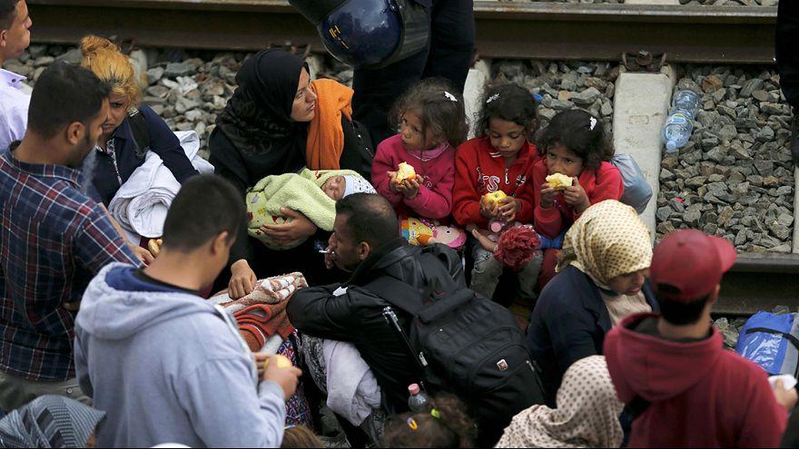 Depuis la Croatie ou la Serbie, des milliers de réfugiés recherchent désespérément l'itinéraire le plus favorable