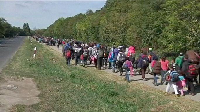 Des milliers de réfugiés arrivent en Autriche après avoir traversé la Hongrie
