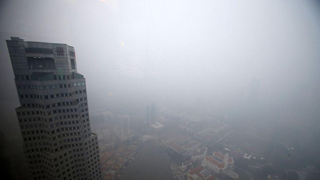 Grande incendio boschivo in Indonesia causa una ampia nube di cenere