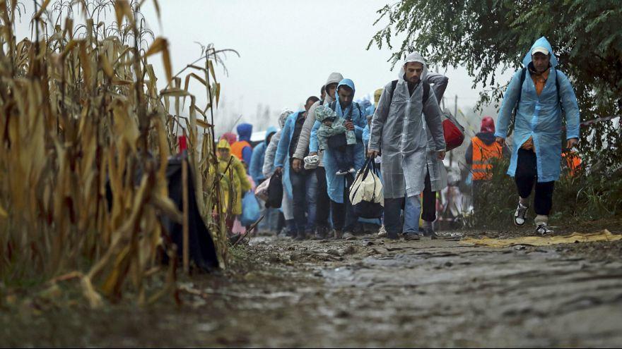 لاجئون يعبرون الحدود بين صربيا وكرواتيا