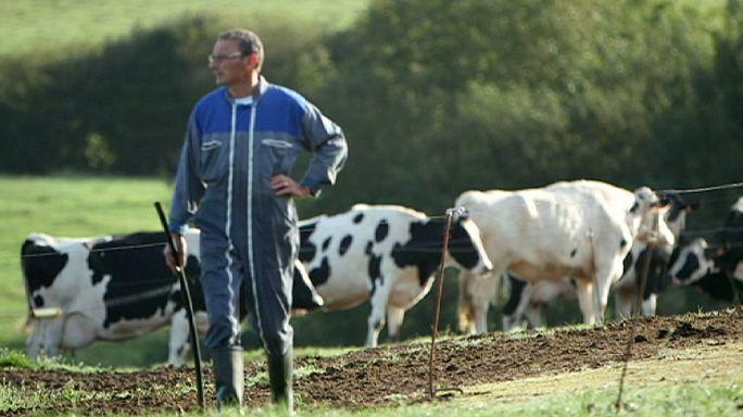 Des agriculteurs européens désespérés