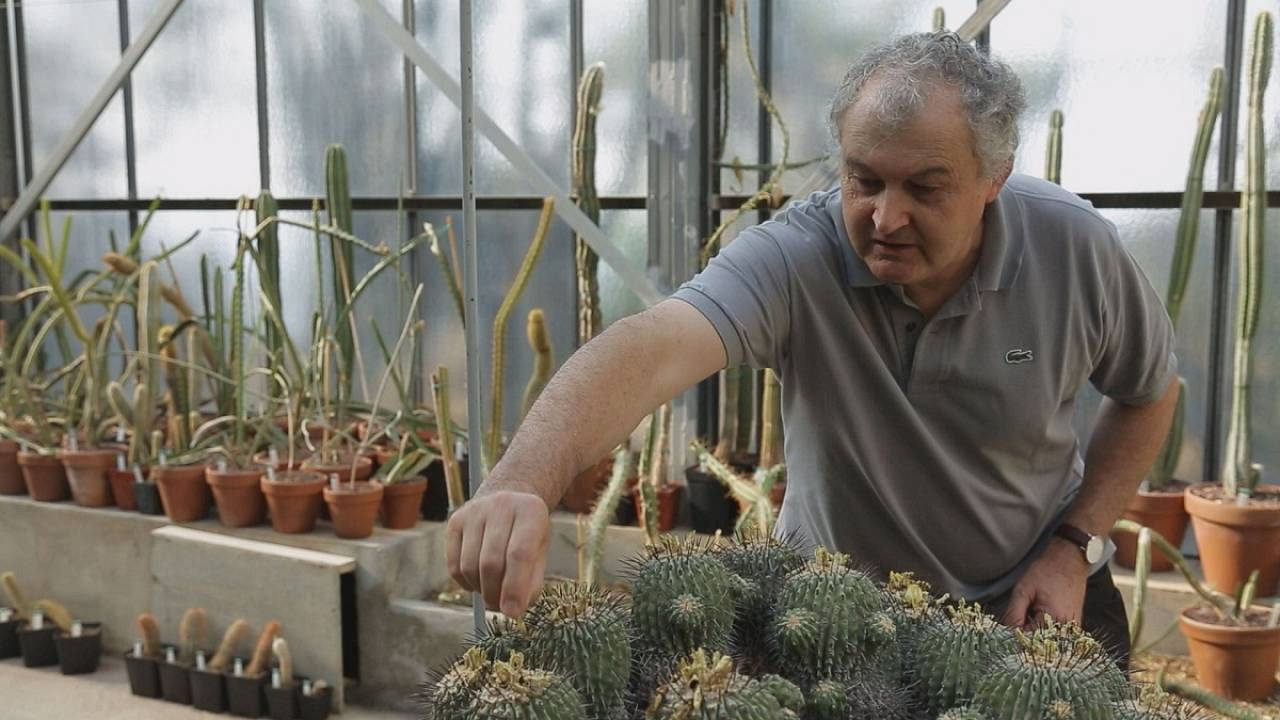 Jean-Marie Solichon : sauver le patrimoine botanique