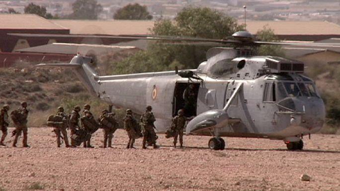Почему НАТО воздерживается от боевых действий в Сирии