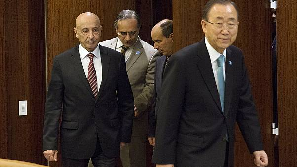 UN proposes unity government in Libya