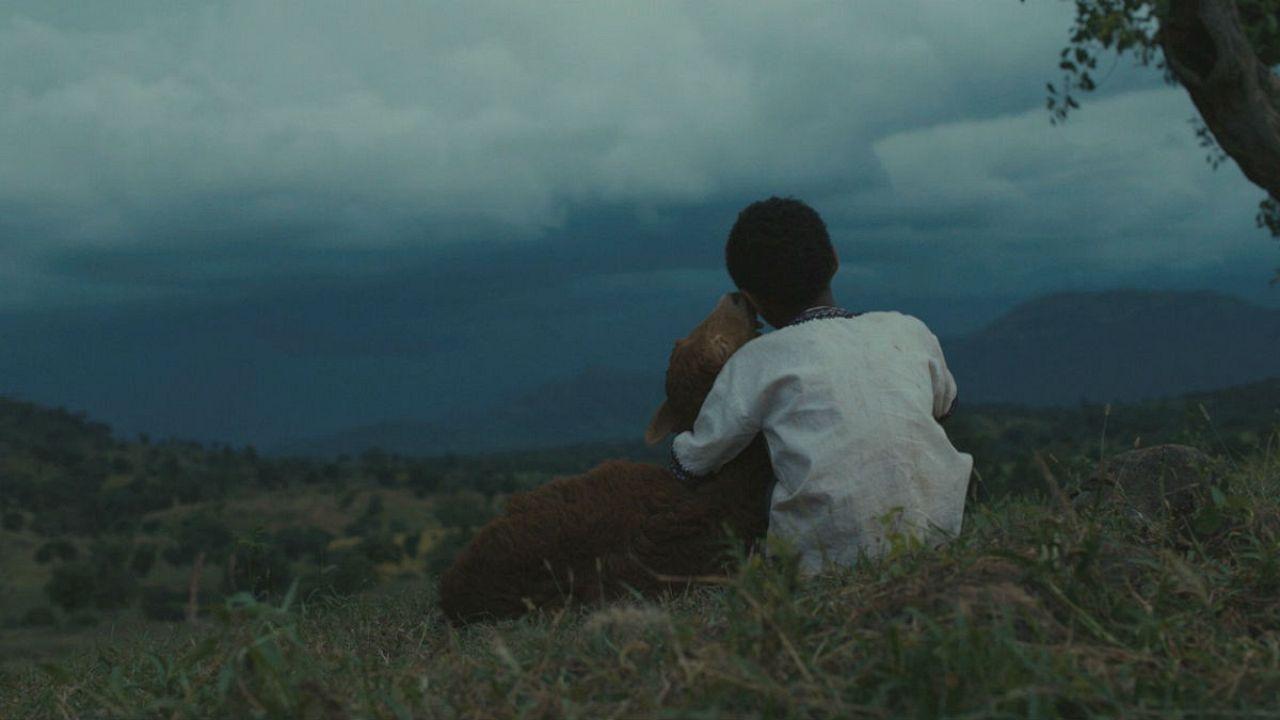 Nefes kesen bir Etiyopya filmi: 'Lamb'