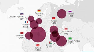 IŞİD'e en fazla katılım Tunus, Suudi Arabistan ve Ürdün'den
