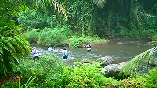 رقابتهای ماراتن موسوم به یورش به درختان سبز در بالی اندونزی برگزار شد