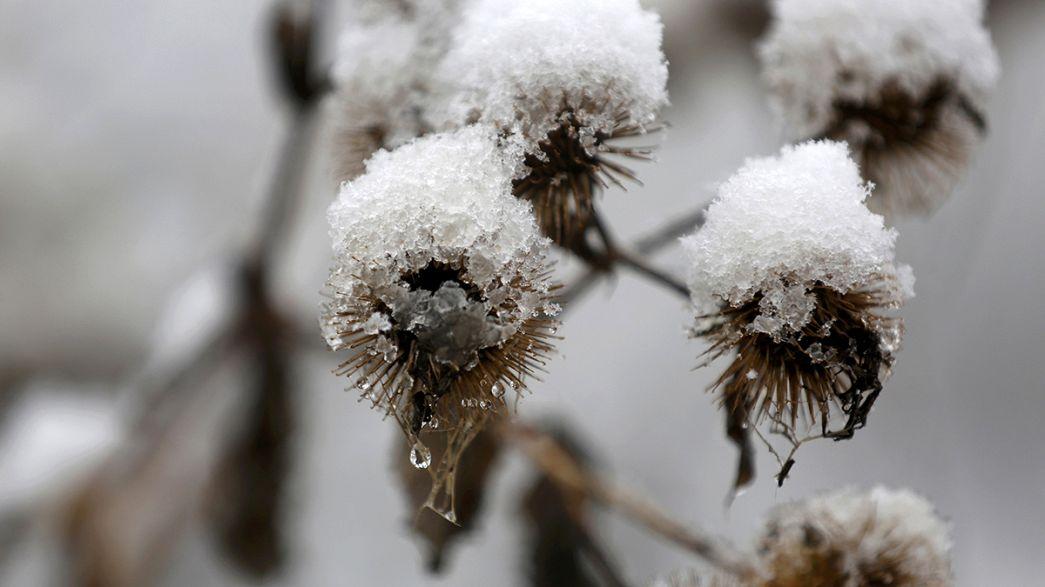 Staunen über den ersten Schnee