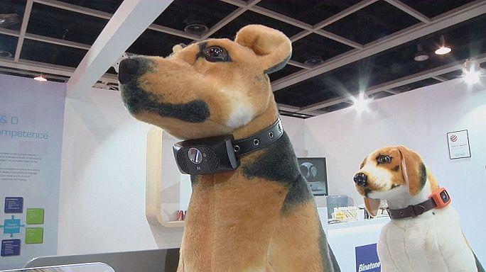 Hong Kong : robots, drones et animaux de compagnie