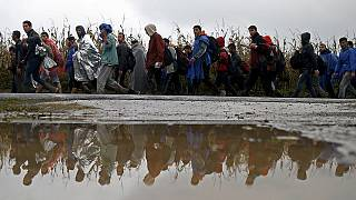 Croatia opens border with Serbia; migrants flood across the frontier