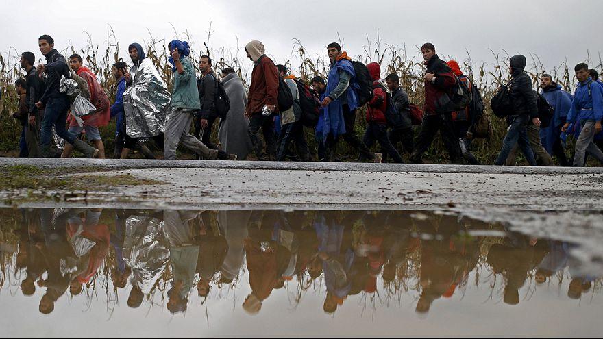 کرواسی مرزهای خود را به روی پناهجویان باز کرد