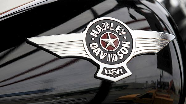 Harley-Davidson's profits fall as motorbike sales decline