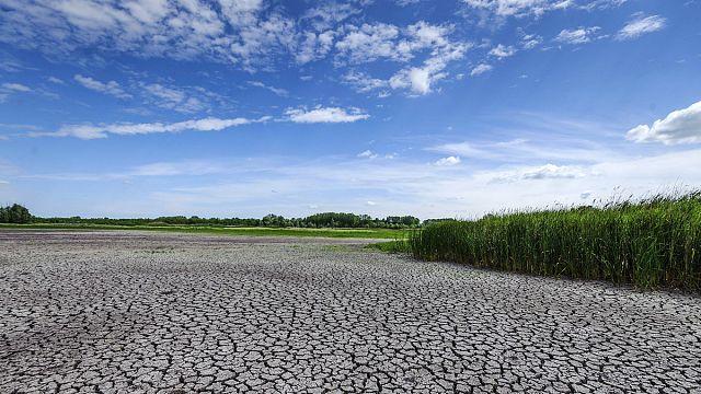 Magyarországon csökkenhet a csapadék a felmelegedés miatt