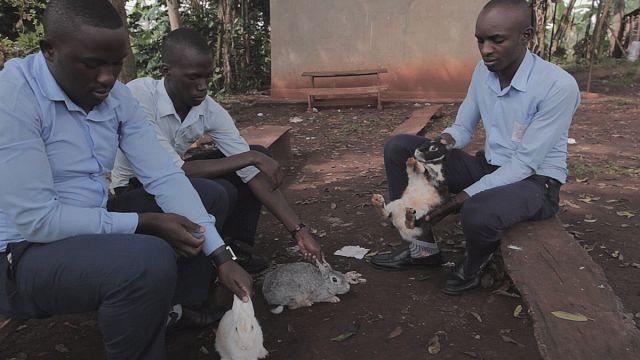 Лауреаты премии WISE-2015: проекты из Уганды и Египта