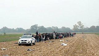 اللجوء: طريق الخلاص من مطرقة النظام السوري وسندان داعش
