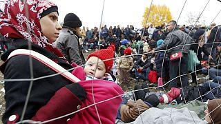 Германия критикует Австрию за политику в отношении беженцев
