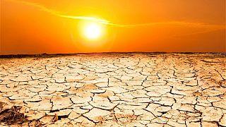 خاورمیانه شاهدی است بر رابطه بین خشکسالی با خشونت