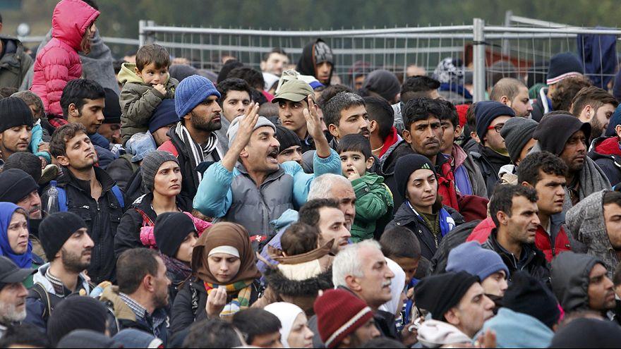 Slovenya-Avusturya sınırında sığınmacı kaosu