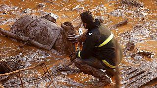 البرازيل: قتيلان على الأقل وثمانية وعشرون مفقودا في انهيار أرضي