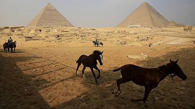 Egypt: Waiting for tourists!