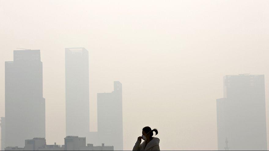 Alarmmeldung vor dem Klimagipfel: Treibhausgase auf Rekordhoch