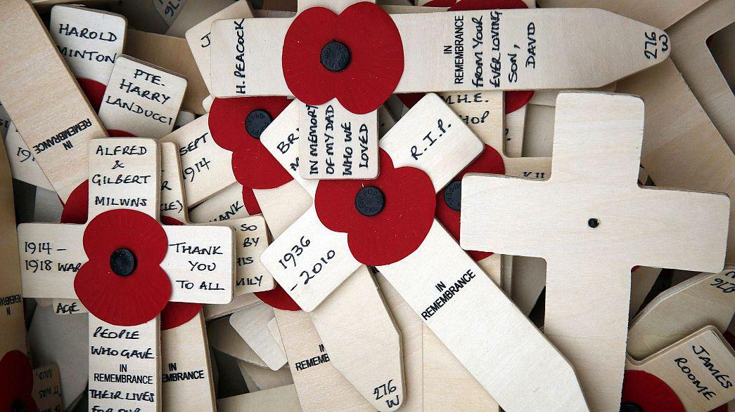 La tradizione del papavero in ricordo dei caduti in guerra
