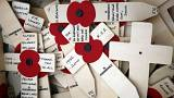 Anma Günü'nün sembolü Kırmızı Gelinciklerin tarihçesi ve anlamı