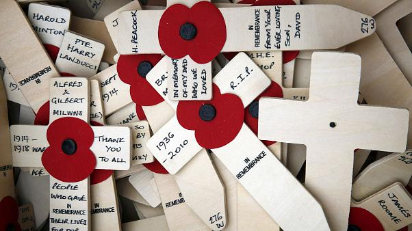 Poppy Appeal: Η ιστορία και η σημασία της κονκάρδας - παπαρούνας
