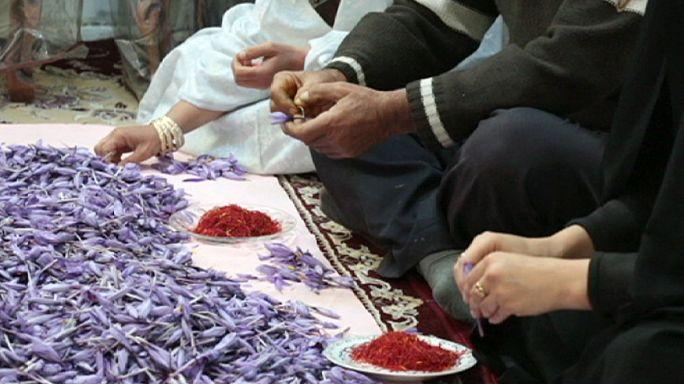 الزعفران الايراني الى الاسواق العالمية بعد رفع العقوبات