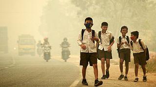 Clima: recorde de gases com efeito de estufa na atmosfera