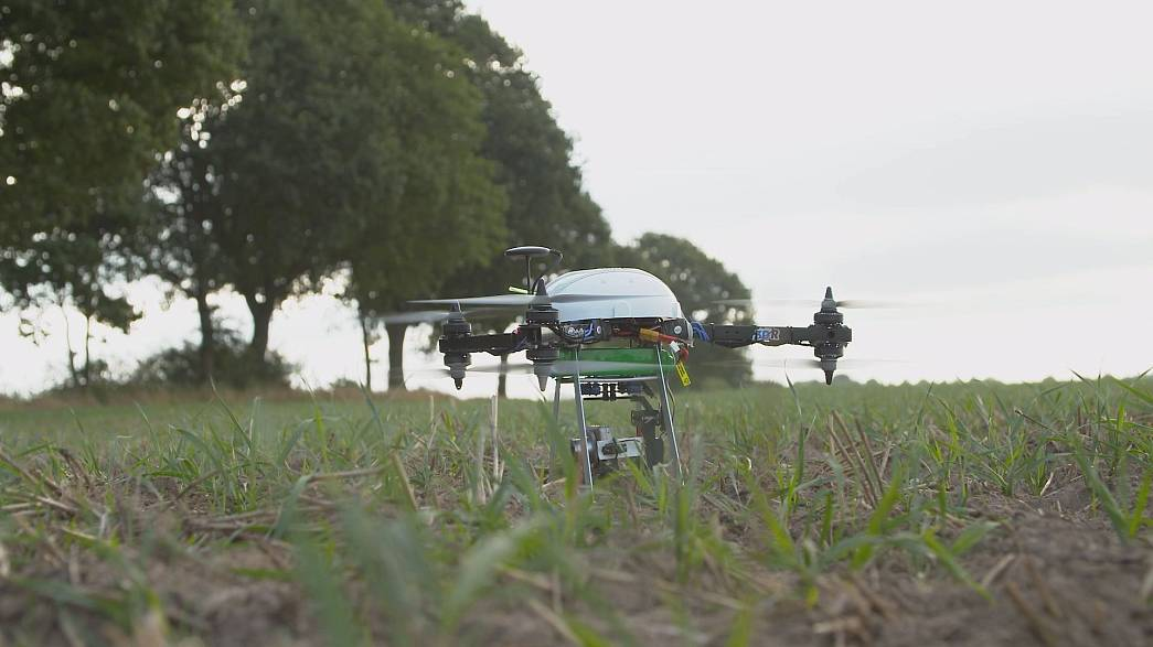Über dem Acker, die Drohne