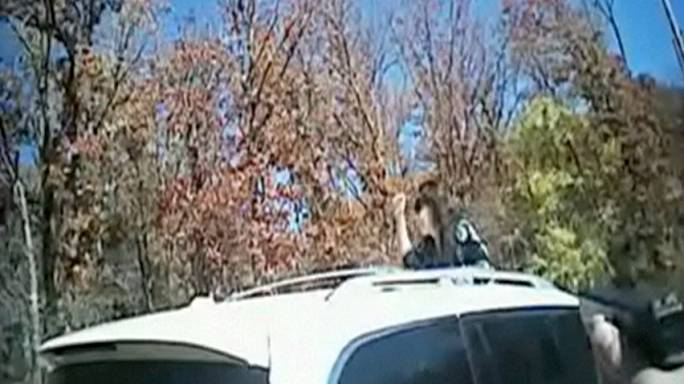 Une caméra embarquée de police capture une arrestation... mouvementée