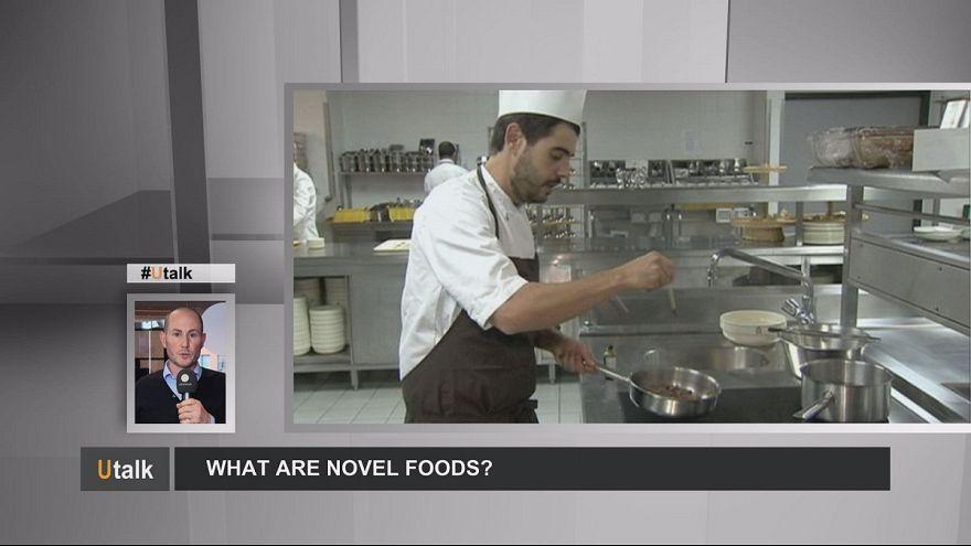 Mit nevezünk új élelmiszernek?