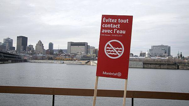 نگرانی مردم مونترال از آلودگی آبهای رودخانه سنت لورنس