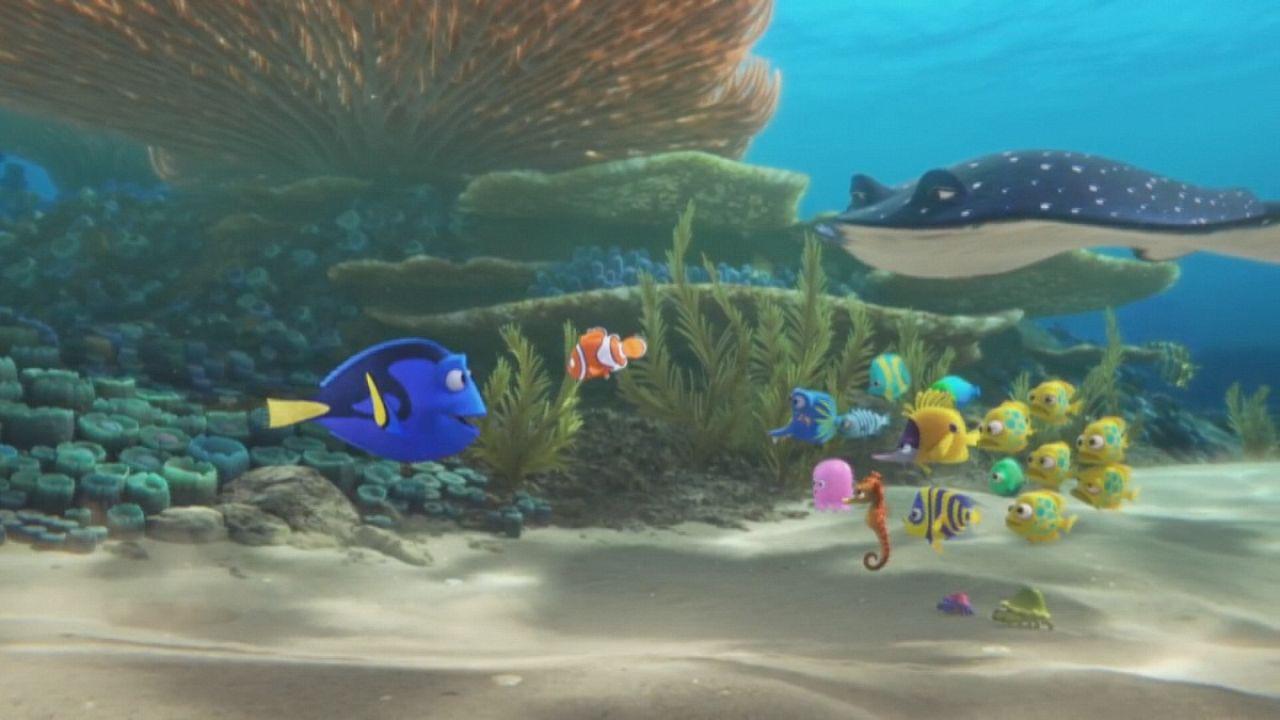 """Le """"Monde de Nemo"""" revient sur grand écran"""