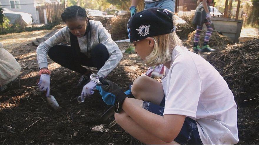 Jardiner, rien de tel pour apprendre le développement durable!