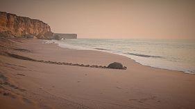 Nas costas de Omã