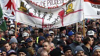 В швейцарии фермеры протестуют против сокращения дотаций