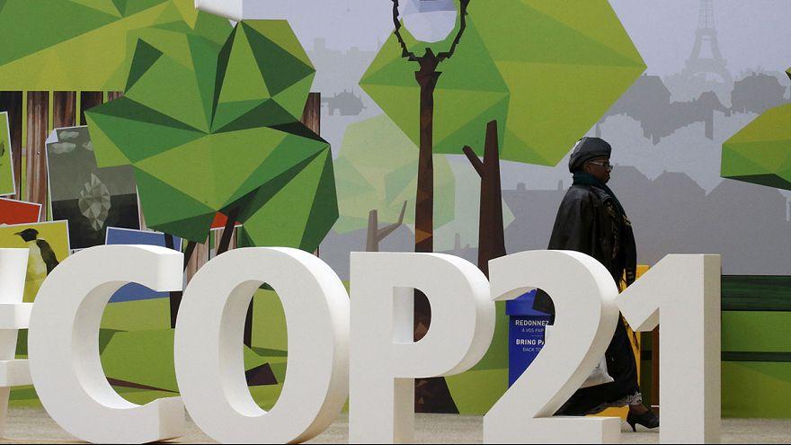 Día de África en la Cumbre del Clima que se celebra en París