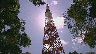 Una enorme torre para estudiar el cambio climático en la Amazonia