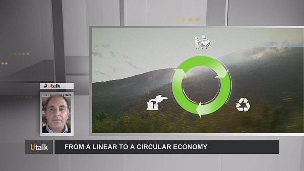 Принципы циклической экономики набирают популярность и помогают тратить меньше
