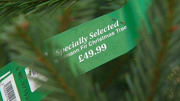 Descida do euro baixa preço...das árvores de Natal