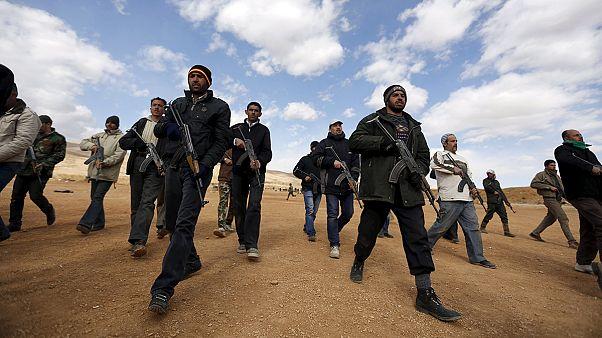 Умеренные силы сирийской оппозиции - кто они?