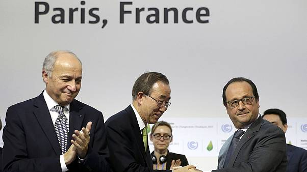 Expert warns of danger to COP 21 treaty from fossil fuel giants
