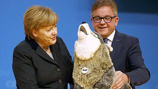 Η Μέρκελ και ο... λύκος!